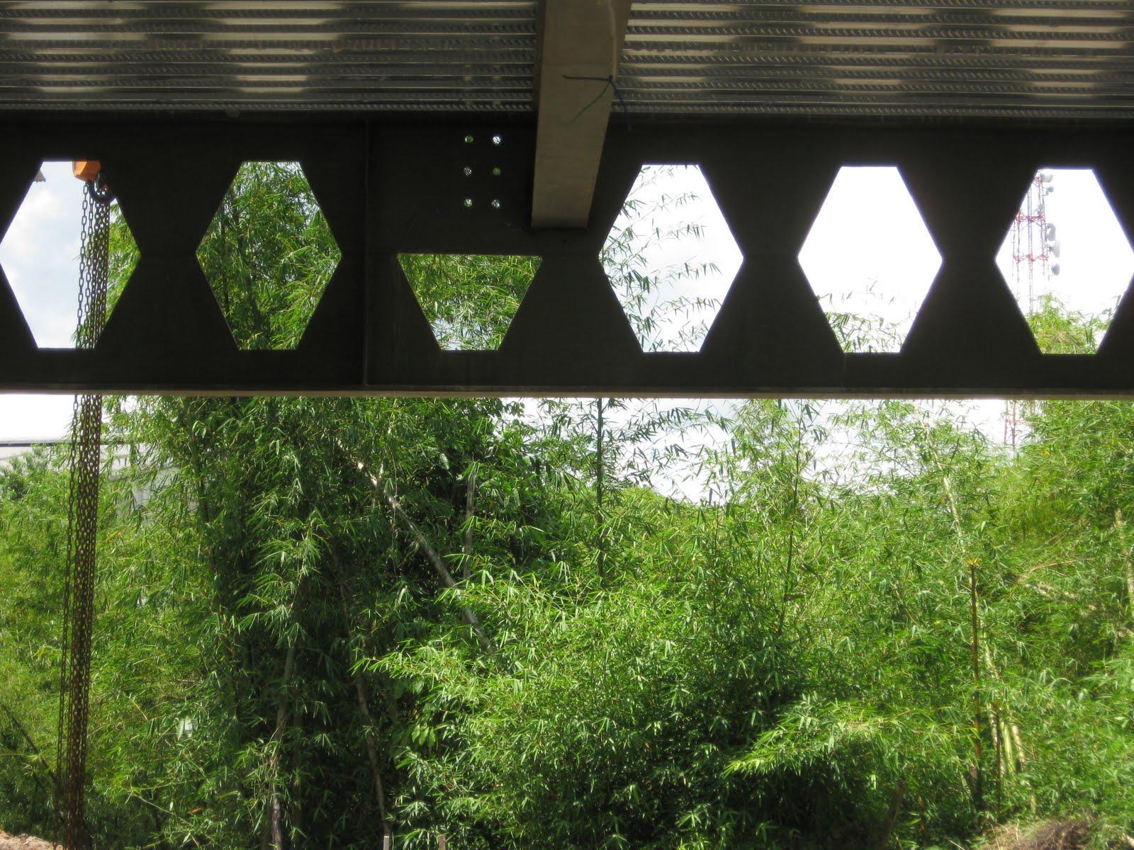 تیر لانه زنبوری در پل