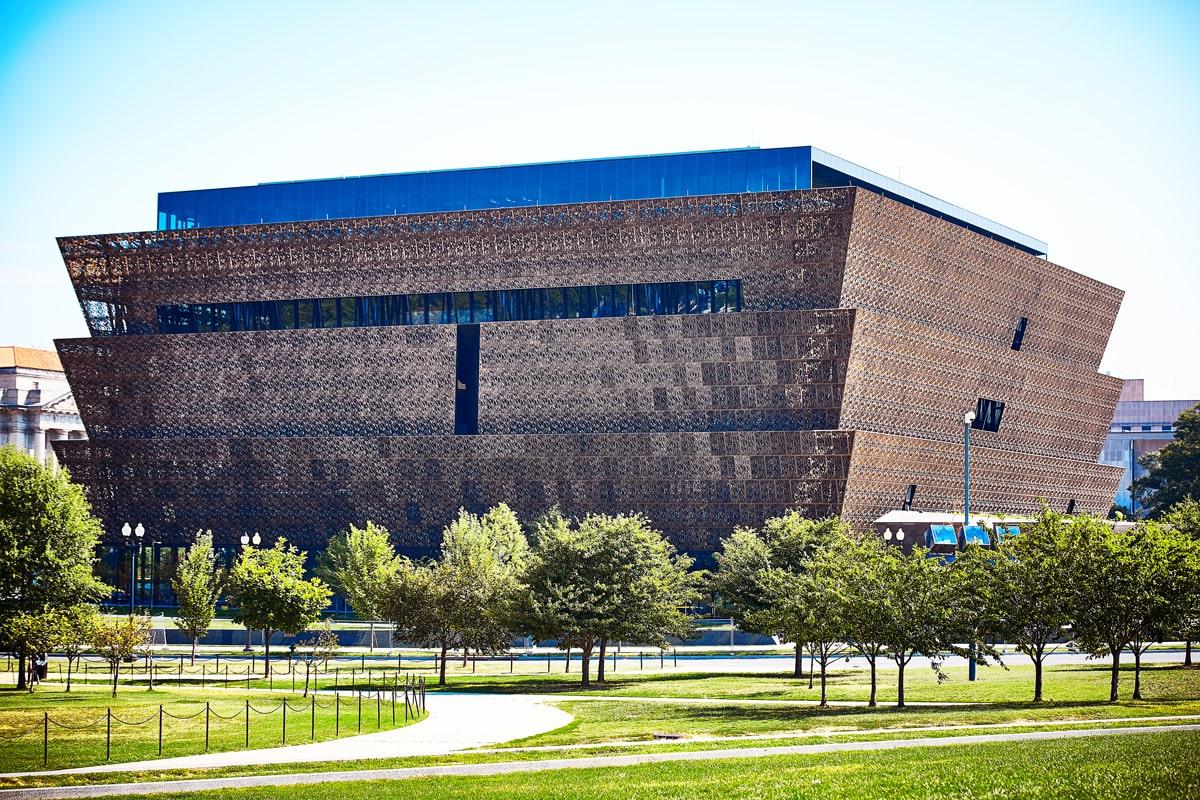 دیود آجای - بررسی موزه ملی تاریخ و فرهنگ آمریکایی آفریقایی - استواراسازان
