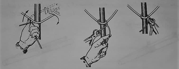 اجرای گره پشت گردنی در اتصال میلگرد راستا به خاموت - وصله آرماتورها - استوارسازان