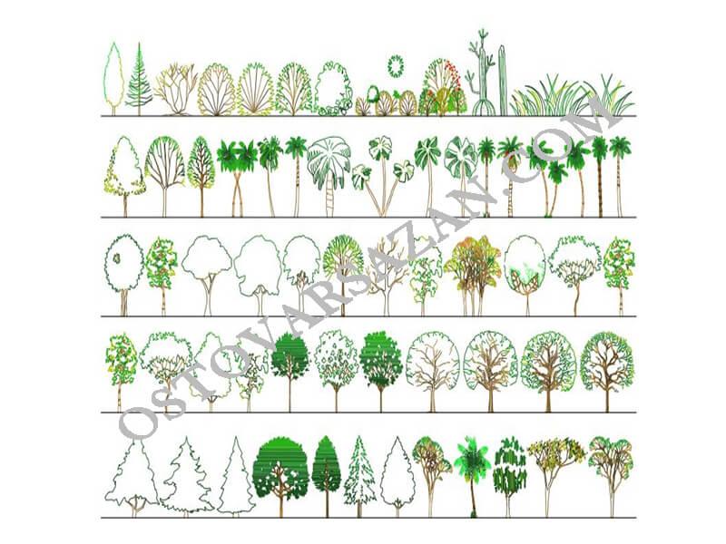 بلوک کامل درخت سه بعدی اتوکد