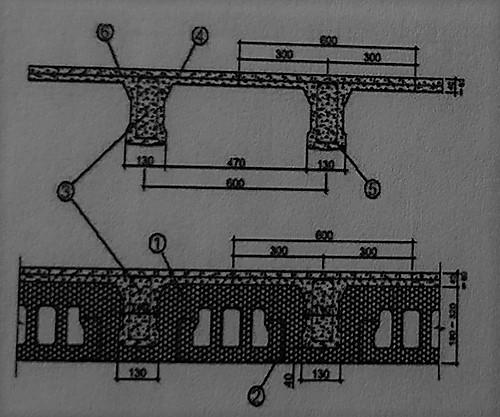 سقف اجرا شده با پانل سقف - ساختمان های بتن مسلح با قالب عایق ماندگار - استوارسازان